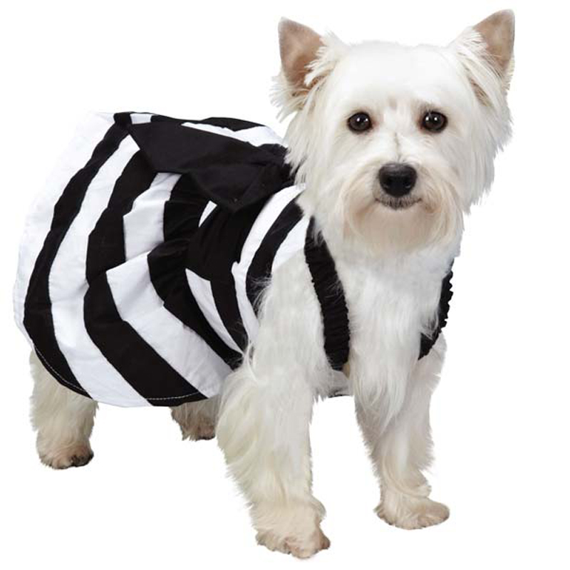 M. Isaac Mizrahi Stripe Dog Dress - Black and White