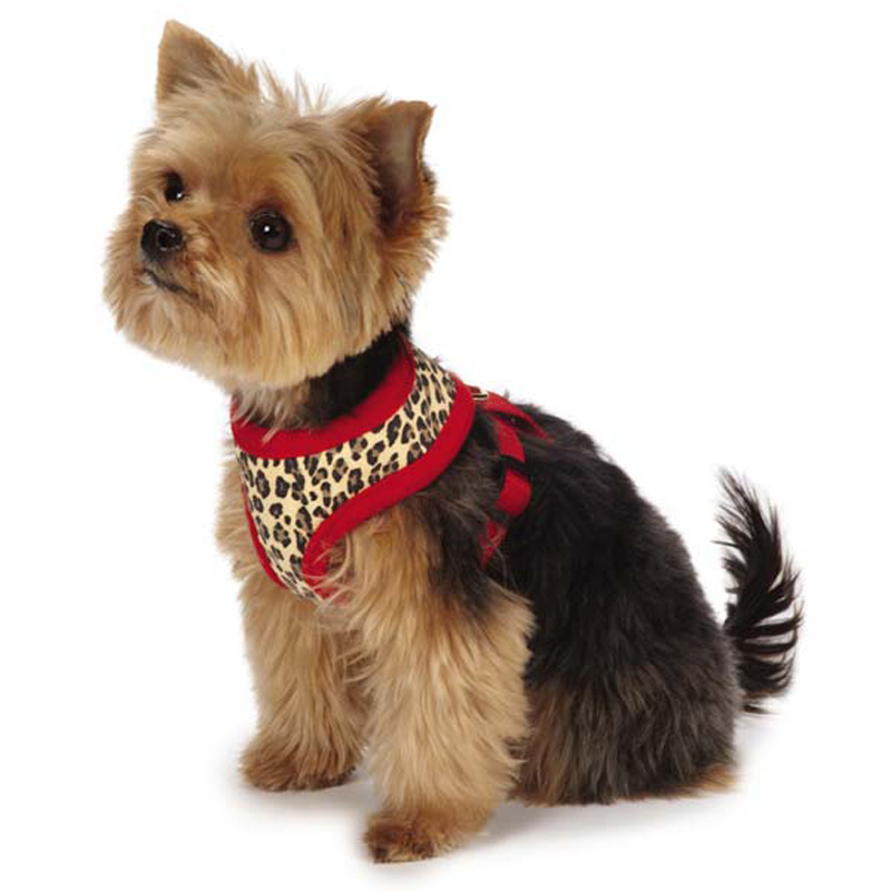 M. Isaac Mizrahi Leopard Collection Dog Harness