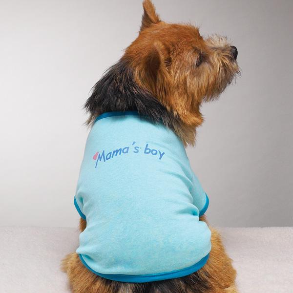Small Dog Clothes Boy