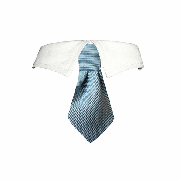 Mason Dog Shirt Collar & Tie - Blue