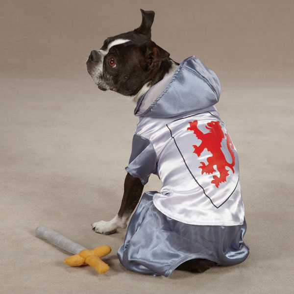 Medieval Knight Dog Halloween Costume