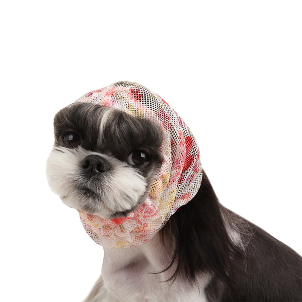 Melia Dog Snood by Pinkaholic - Ivory