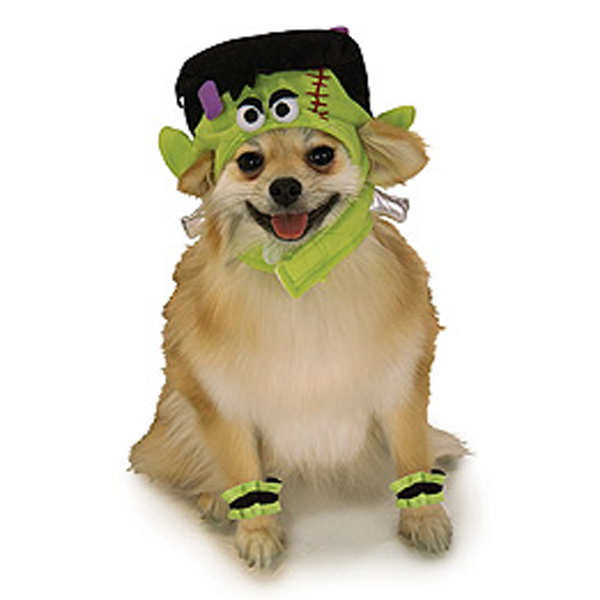 Mini Monster Dog Halloween Costume Hat