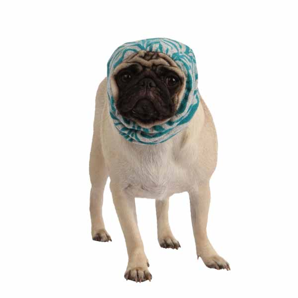 Modern Zebra Dog Snood by Puppia - Blue