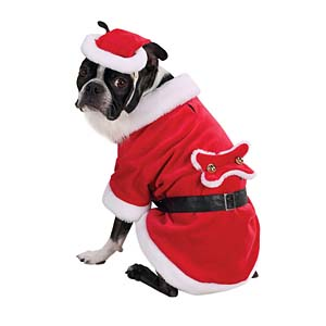 Mr And Mrs Claus Small Dog Outfit