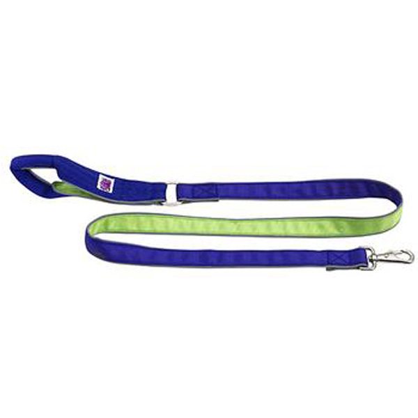 Mutt Gear Comfort Leash - Blue & Green