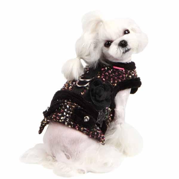 Nadia Flirt Dog Harness by Pinkaholic - Black