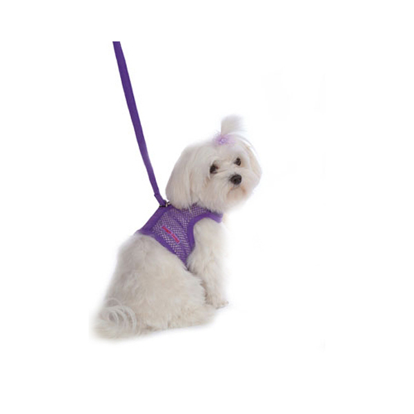 Netted Harness with Leash - Purple