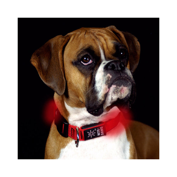 Nite Dawg LED Dog Collar - Red