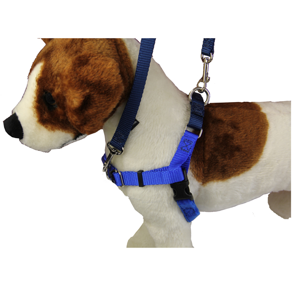 No-Pull Dog Harness Deluxe Training Package - Navy and Royal Blue