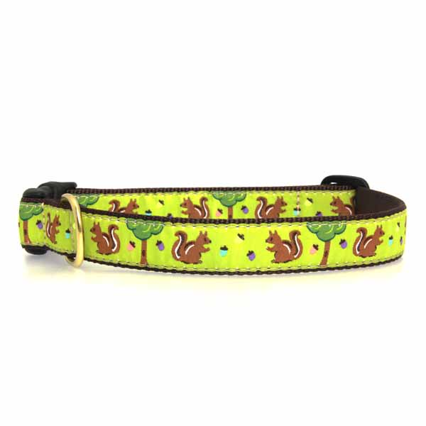 Nuts Dog Collar by Up Country