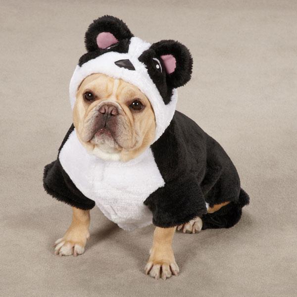 panda pup halloween dog costume baxterboo