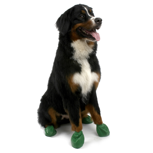 PawZ Disposable Dog Booties 12pk - X-Large Green