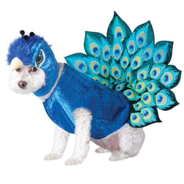Peacock Dog Costume