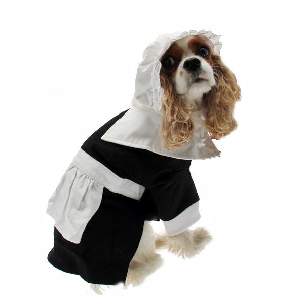Pilgrim Costume For Large Dogs