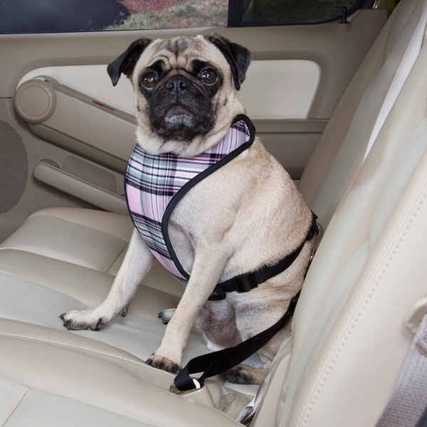 Plaid Car Harness by Guardian Gear - Pink