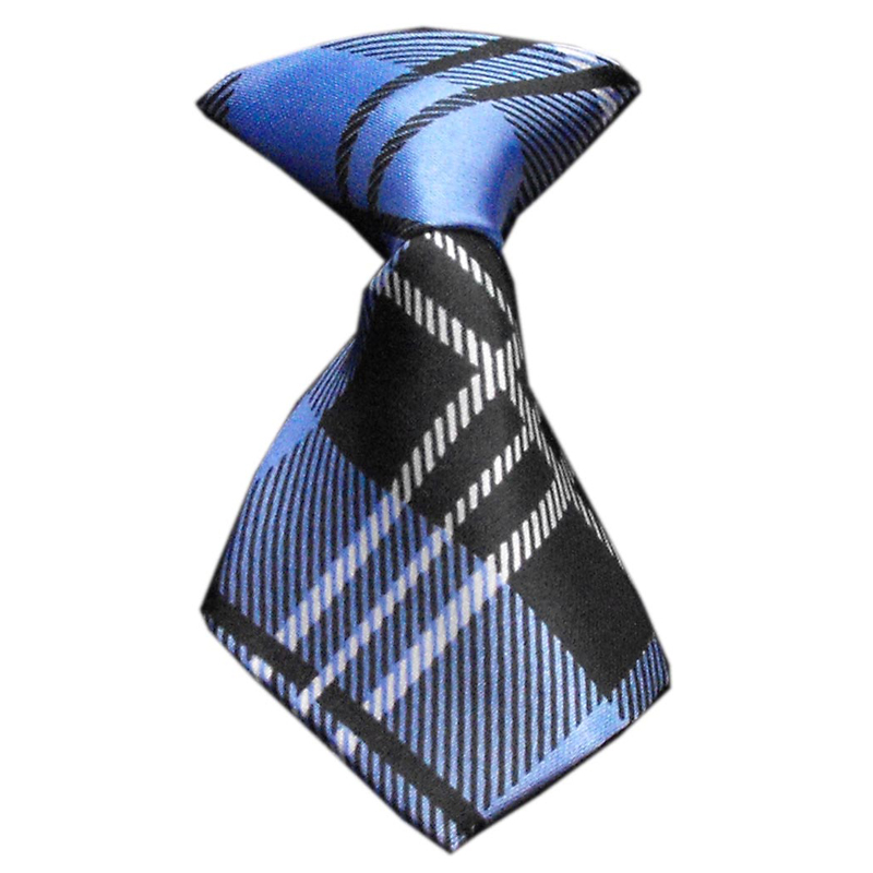 Plaid Dog Neck Tie - Blue | BaxterBoo