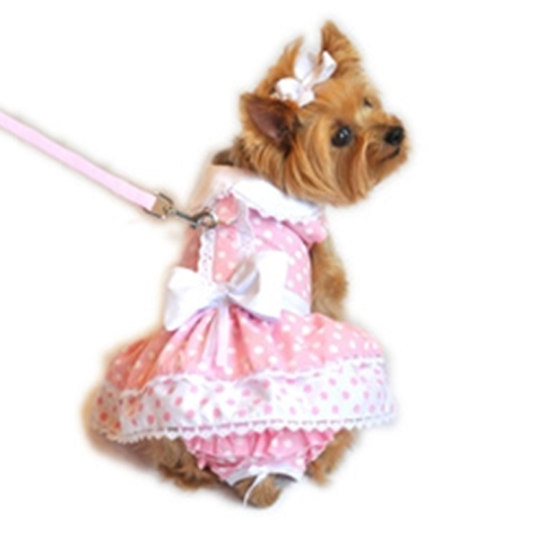 Polka Dot & Lace Dog Dress Set with Panties and Leash - Pink