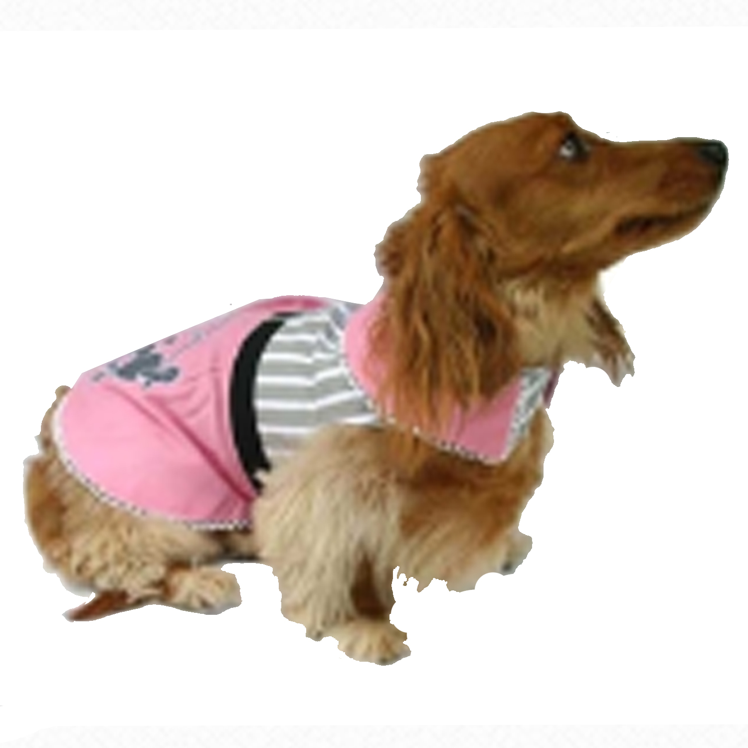 Poodle Skirt Dog Dress