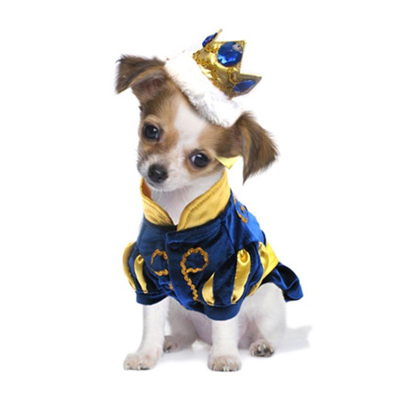 Костюмы на новый год для собак своими