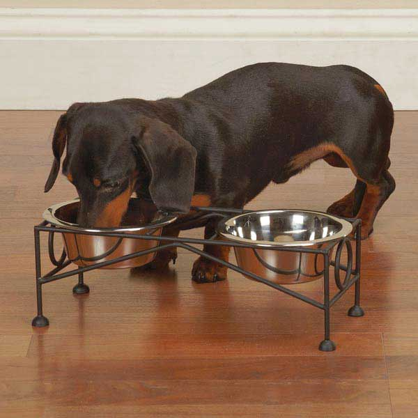 ProSelect Classic Dog Diners