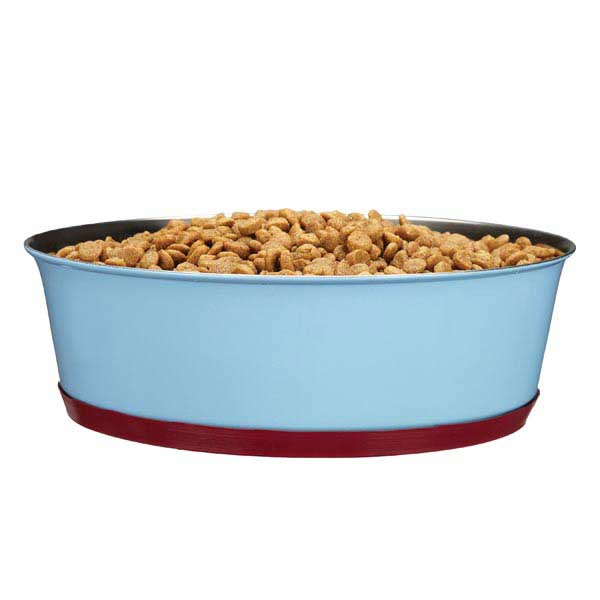 ProSelect Contrast Color Stainless Steel Pet Bowl