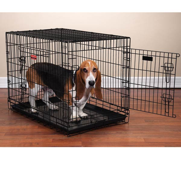 ProSelect Everlasting Dual-Door Folding Dog Crate - Black