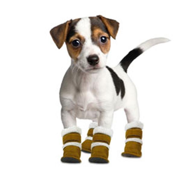 Pugz Dog Boots BaxterBoo