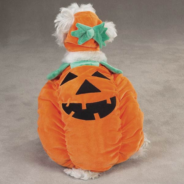 Puppy Pumpkin Costume Pumpkin Pooch Costume For Dogs