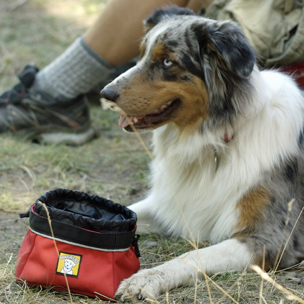 Quencher Cinch Top Dog Bowl by RuffWear - Red Currant
