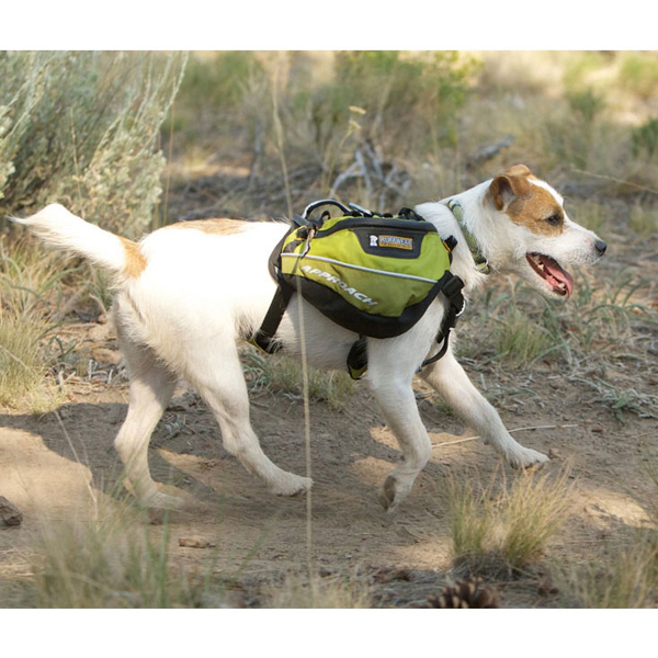 Recreational Approach Pack by RuffWear - Lichen Green