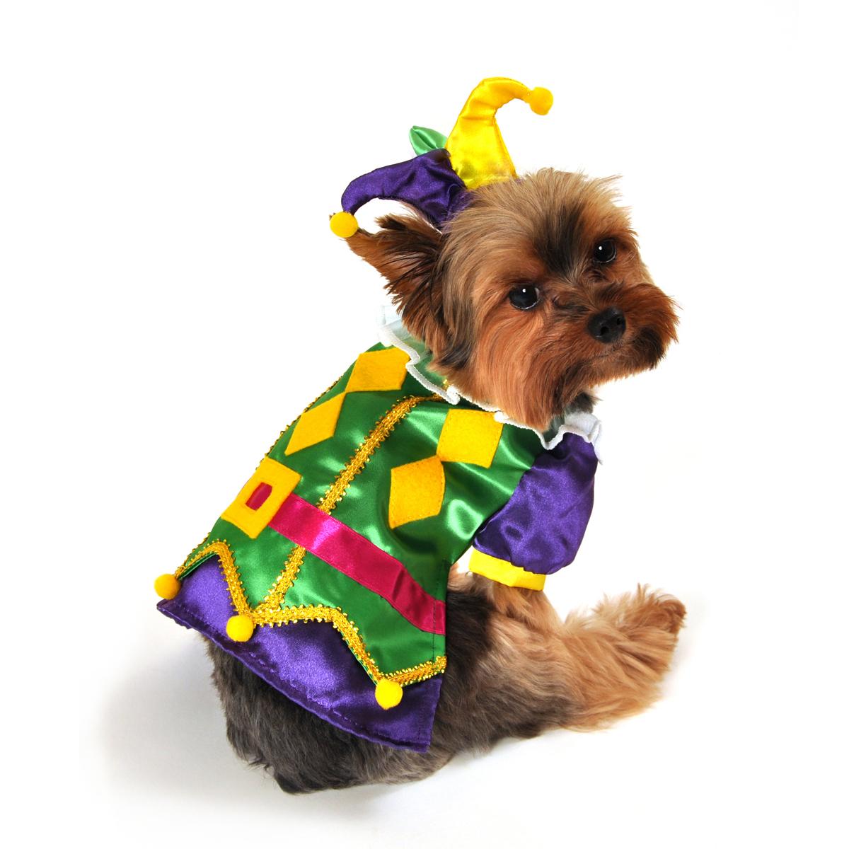 Royal Harlequin Dog Costume