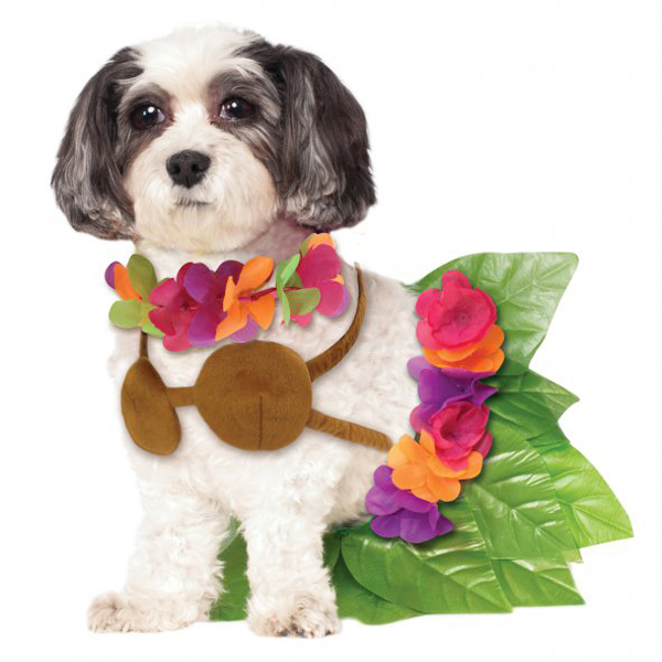 Halloween Costumes For Small Girls Girl Halloween Dog Costume