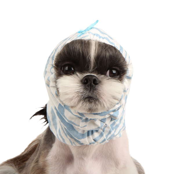 Safari Dog Snood by Pinkaholic - Blue