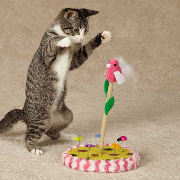 Chirping Bird Toy For Cats