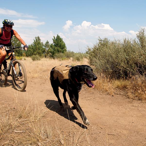 Singletrak Hydration Dog Pack by RuffWear - Dry River Brown