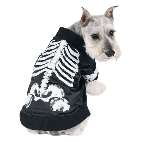 Skeledog Halloween Dog Costume