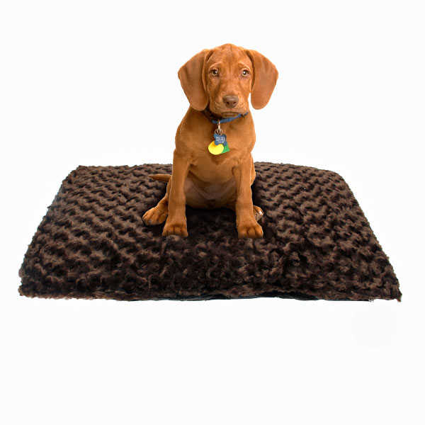 Slumber Pet Swirl Plush Cushion - Chocolate
