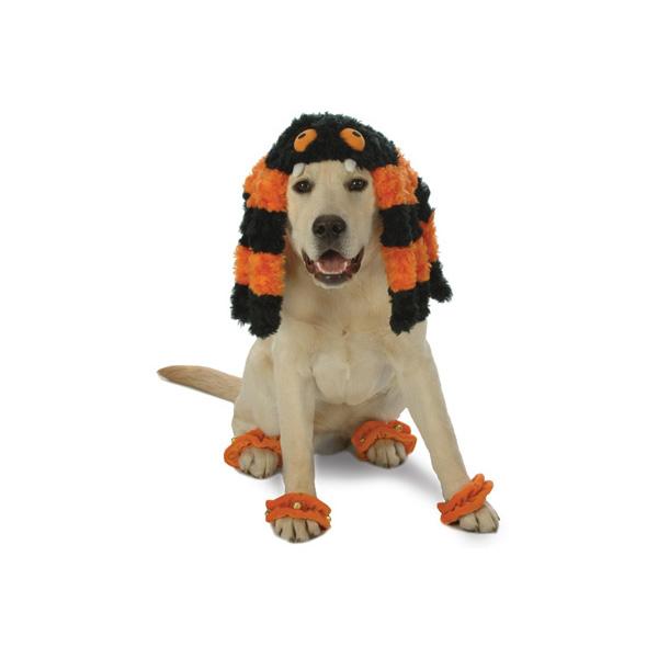Spooky Spider Halloween Dog Costume