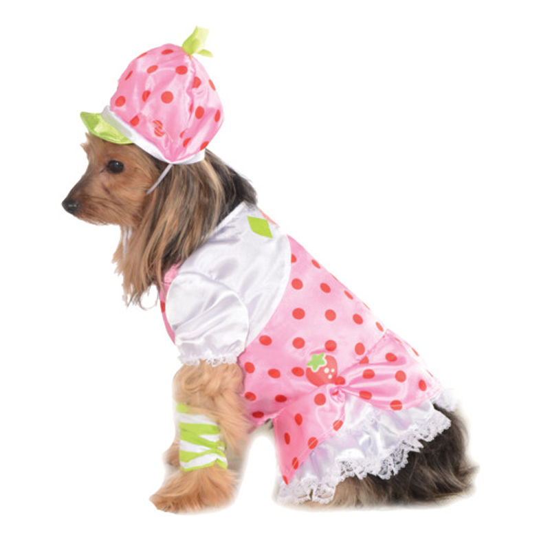 Strawberry Shortcake Dog Costume