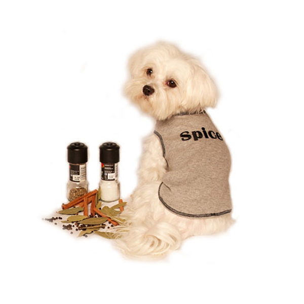 Sugar & Spice Design Dog Tank Top - Spice