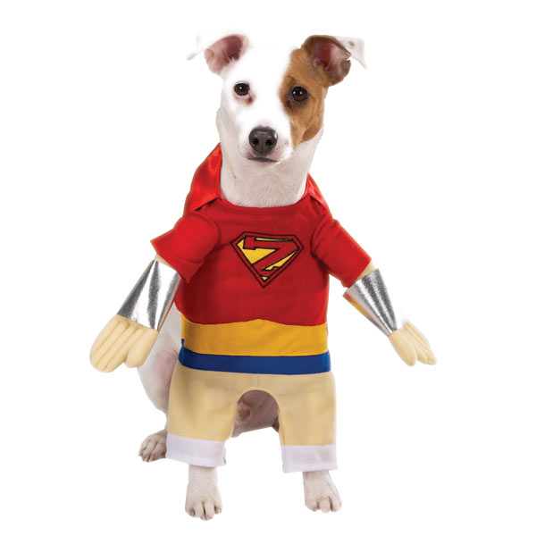 Superhero Dog Halloween Costume by Casual Canine