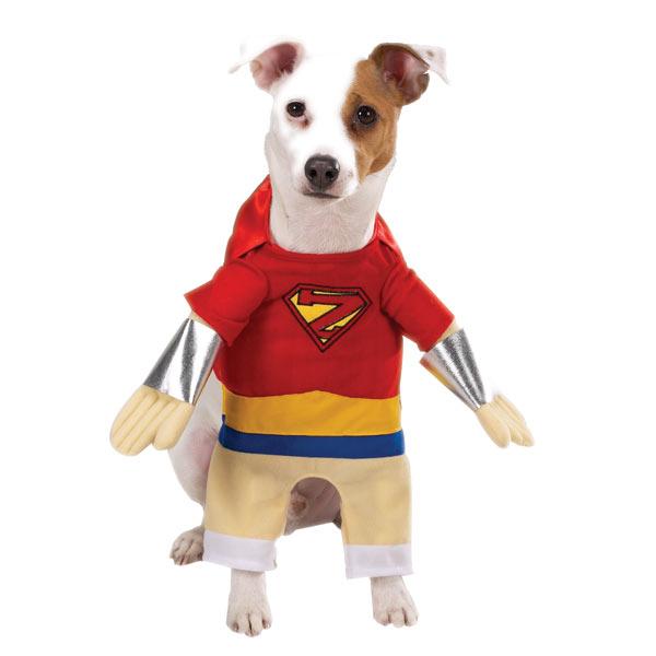 Superhero Dog Halloween Costume by Casual Canine