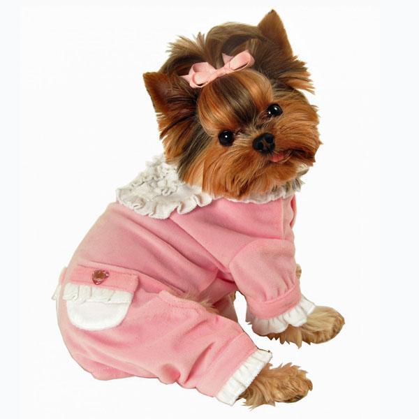 Sweety Dog Jumper Pajamas By Hip Doggie Baxterboo