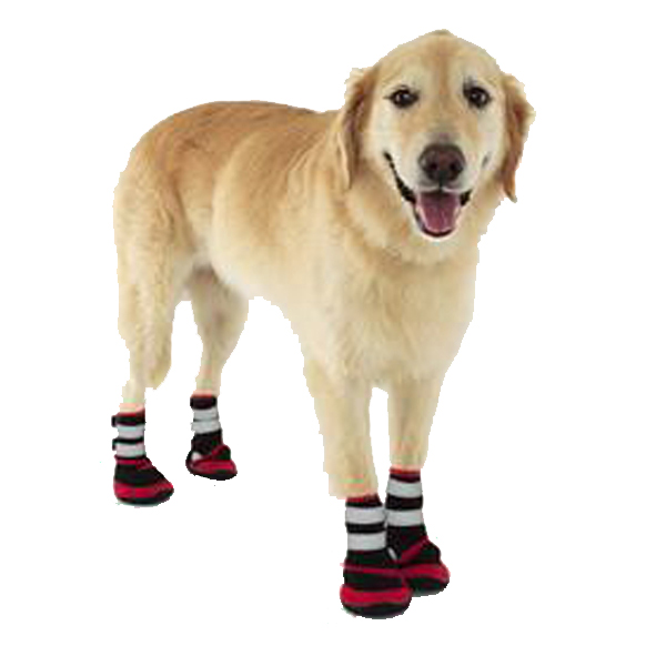 Trail Running Shoes For Dogs