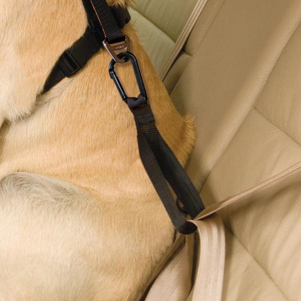 Kurgo Tru-Fit Smart Harness Seatbelt Loop - Black