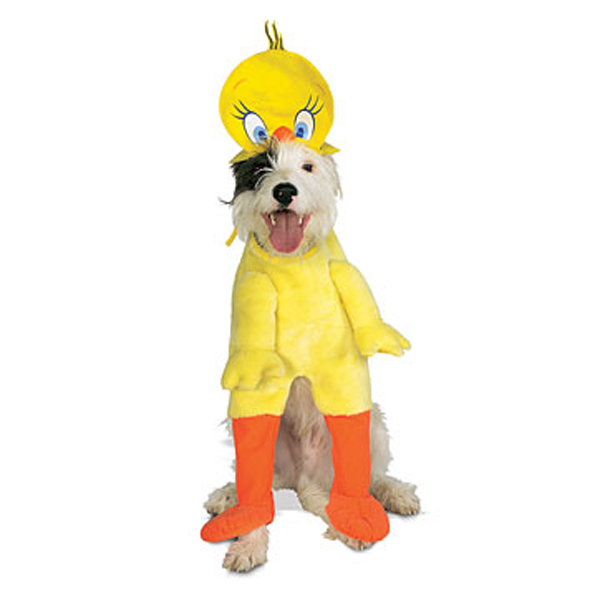 Tweety Bird Dog Halloween Costume