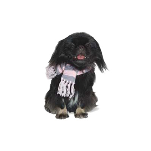 Urban Stripe Dog Scarf by Dogo - Pink