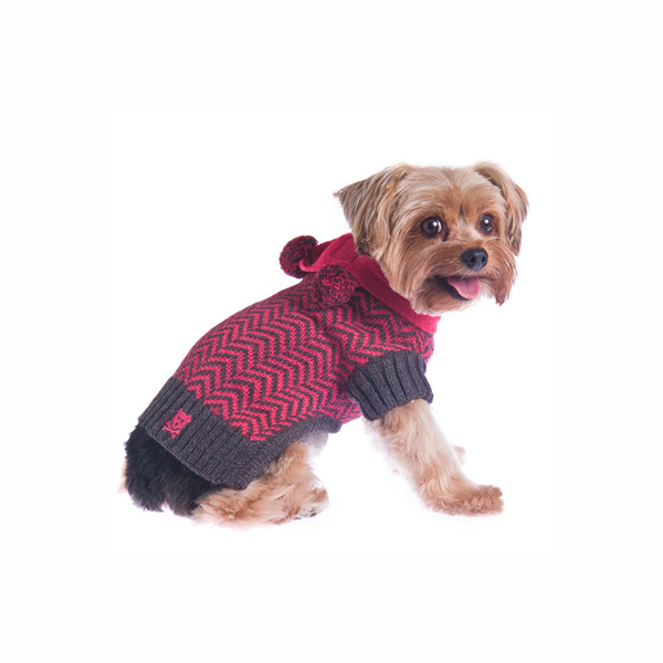 Varsity Girl Dog Sweater with Scarf