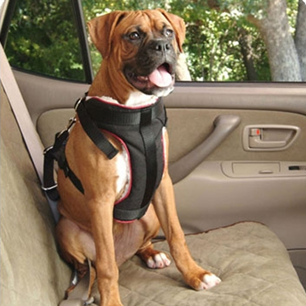 Vehicle Safety Pet Harness